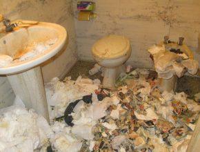 Lixo Habitação